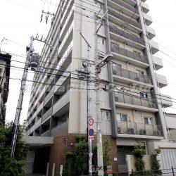 10階建の全部屋南向きのマンションになります。(外観)