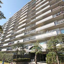 昭和築とは思わせないほど綺麗なマンションです。(外観)